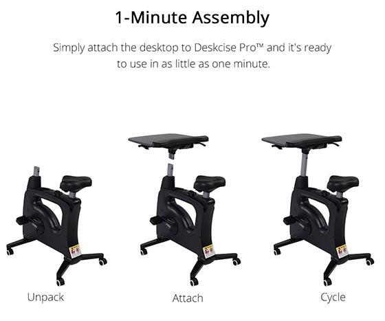Flexispot Assembly
