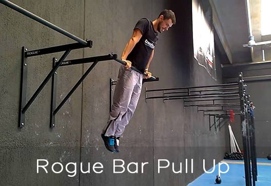 Rogue Fitness bar pull up variations