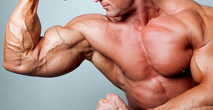 Elements to achieve bigger biceps